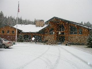 Snow_whitefish